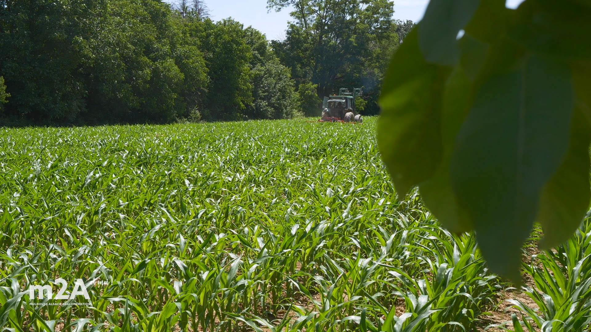 Une agriculture propre