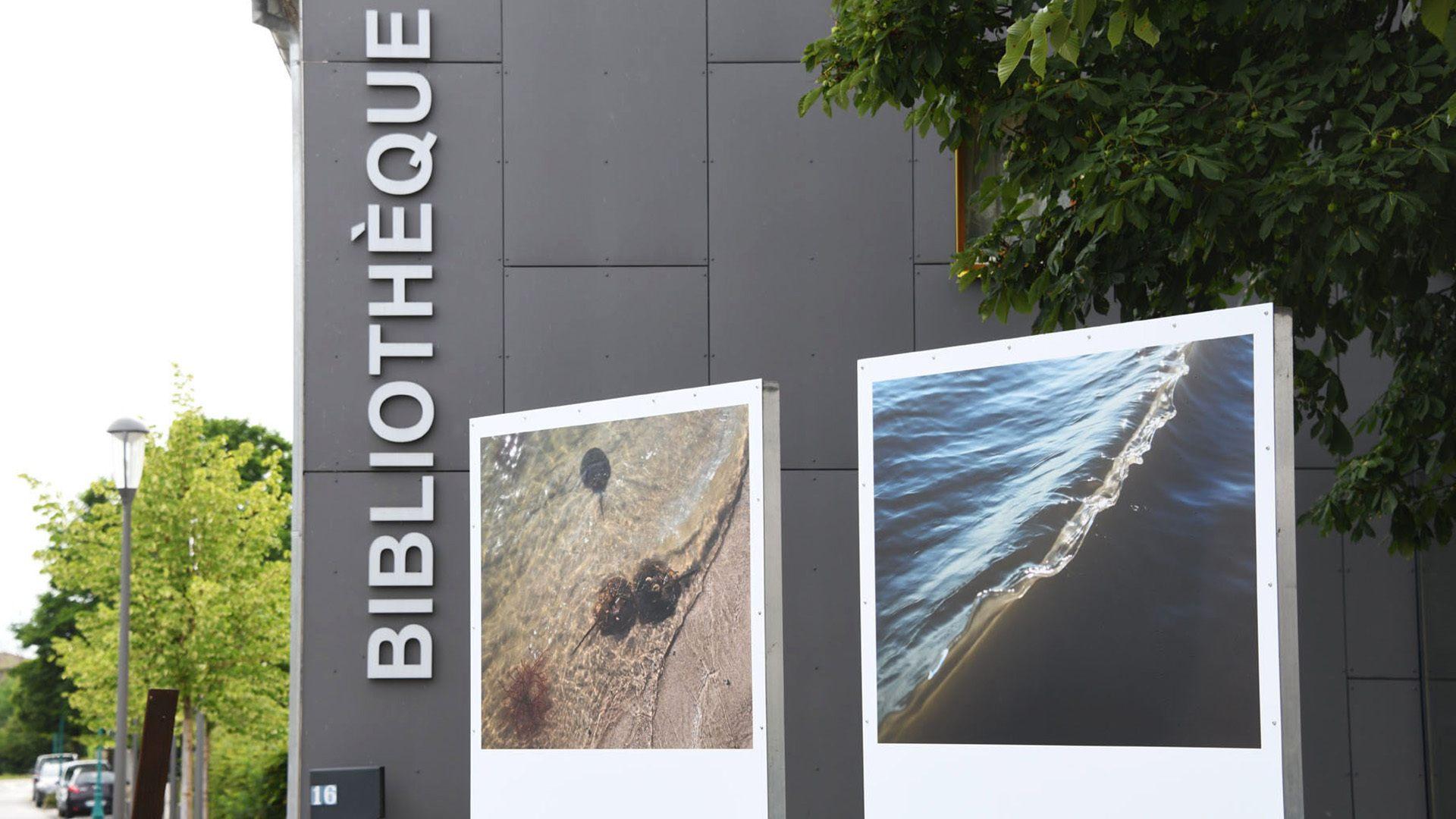 L'interconnexion entre lieu et nature à Chalampé