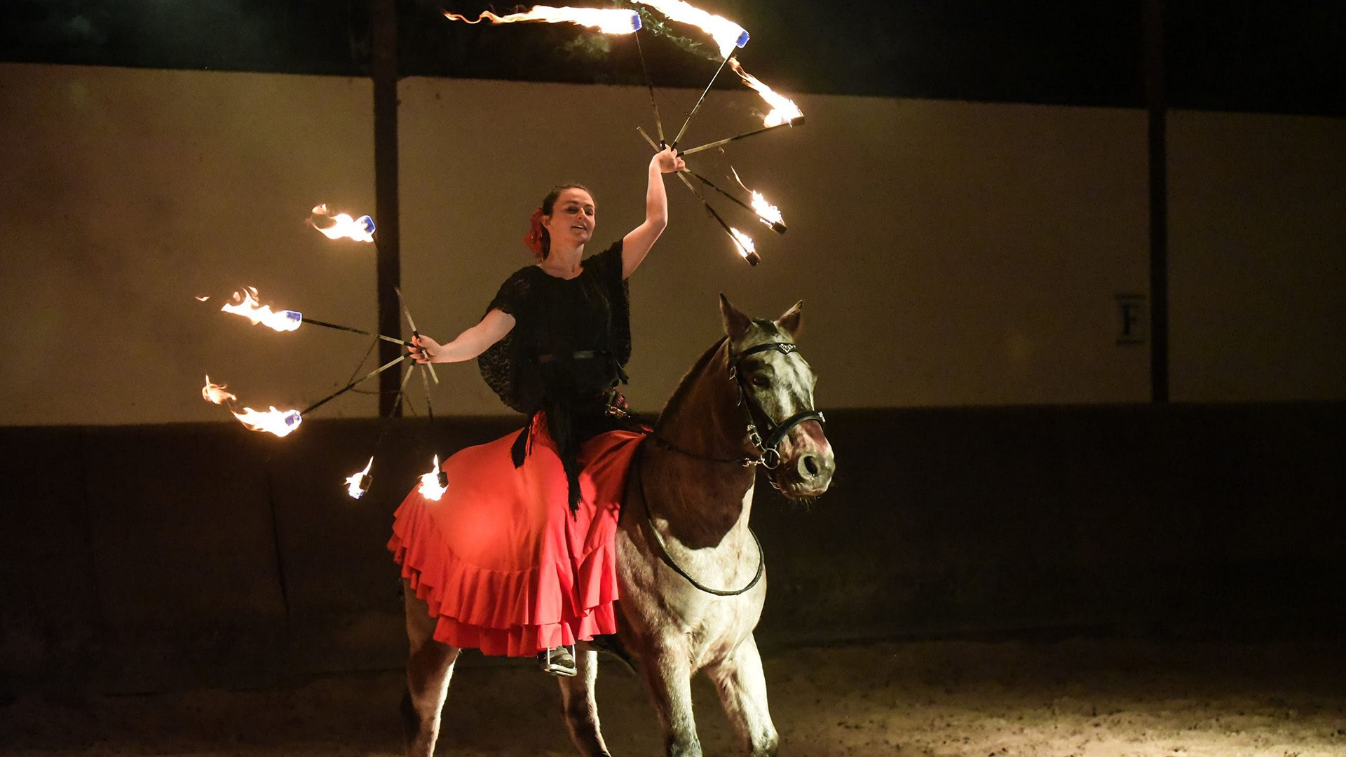 Les arts du feu en majesté à l'Ecomusée d'Alsace : Spectacle équestre