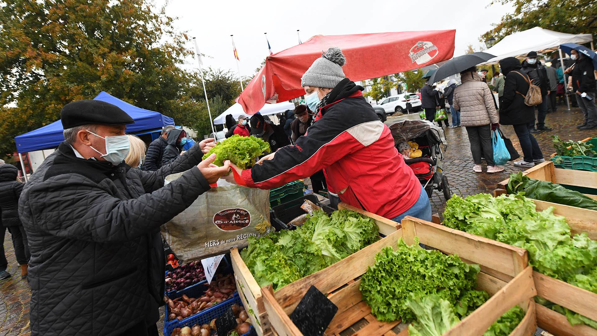 Zillisheim un nouveau marché de producteurs : Légumes et salades sur le stand de Jean Georges Sungauer